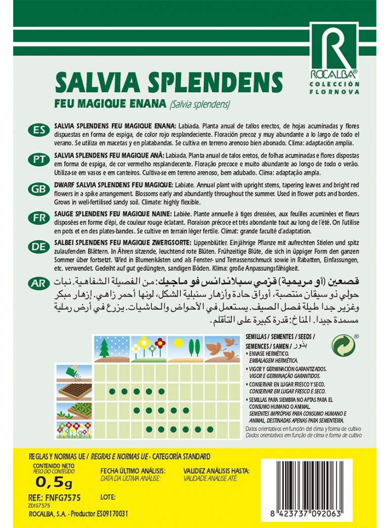 50 semillas Gazania Mezclas