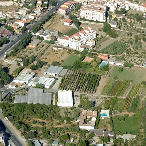 area-de-cultivo-2.png