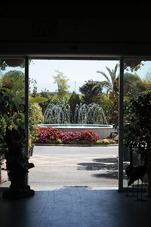 centros-de-jardineria-02.jpg